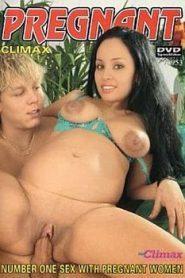 Pregnant Climax 4