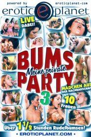 Meine private Bums Party 3